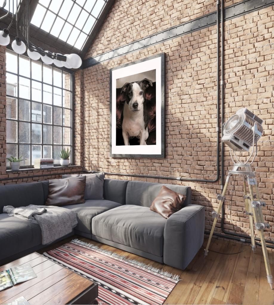 Pet Wall Art by PetPhotographyNY